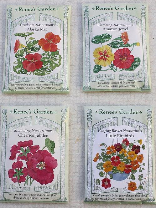 Renee's Garden Nasturium - Heirloom Alaska Mix