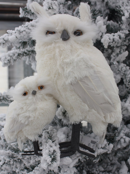 Snow Owl - Mom and Chick