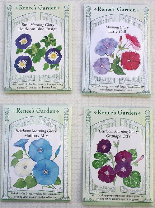 Renee's Garden Morning Glory Seeds