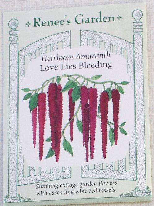 Renee's Garden Amaranth - Heirloom Love Lies Bleeding