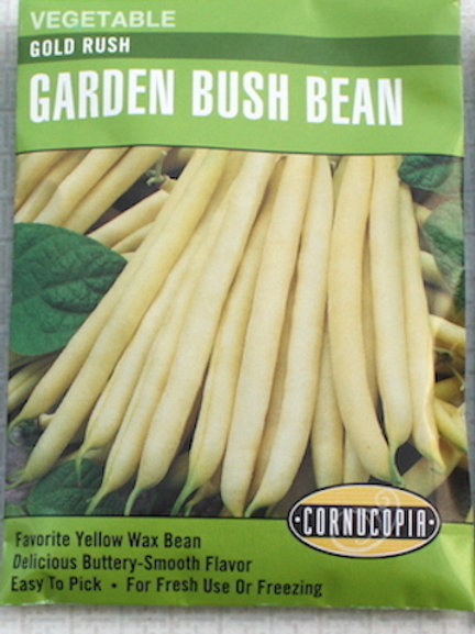 Cornucopia Bean - Bush - Gold Rush