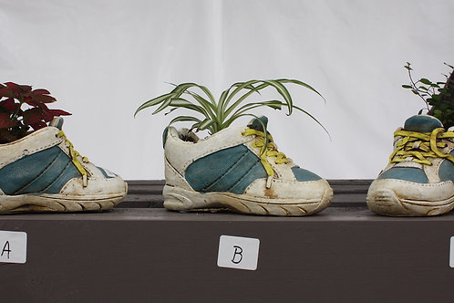 Shoe Planters with Assorted Tropicals