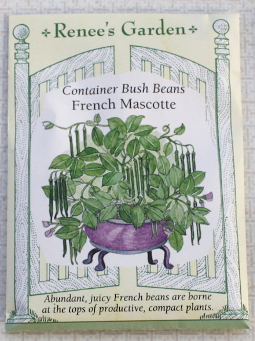 Renee's Garden Bean - Container French Mascotte