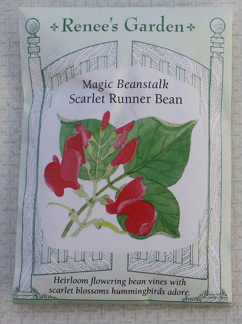 Renee's Garden Magic Beanstalk - Scarlet Runner Bean