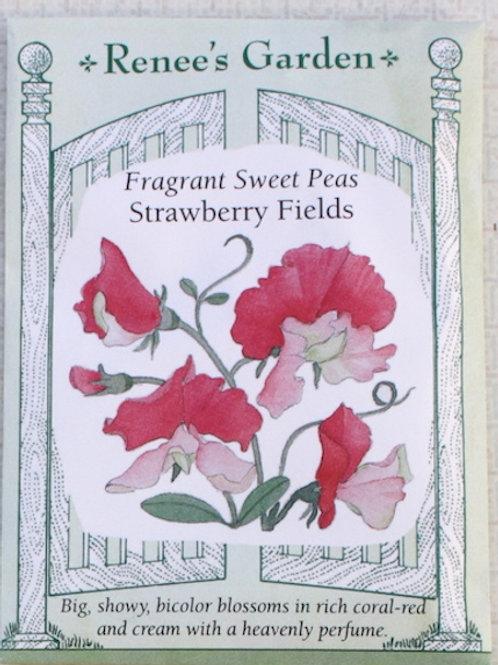 Renee's Garden Sweet Peas - Strawberry Fields