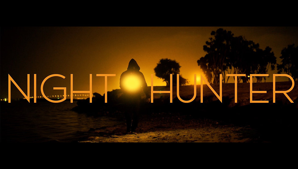 Night Hunter new web Banner.jpg