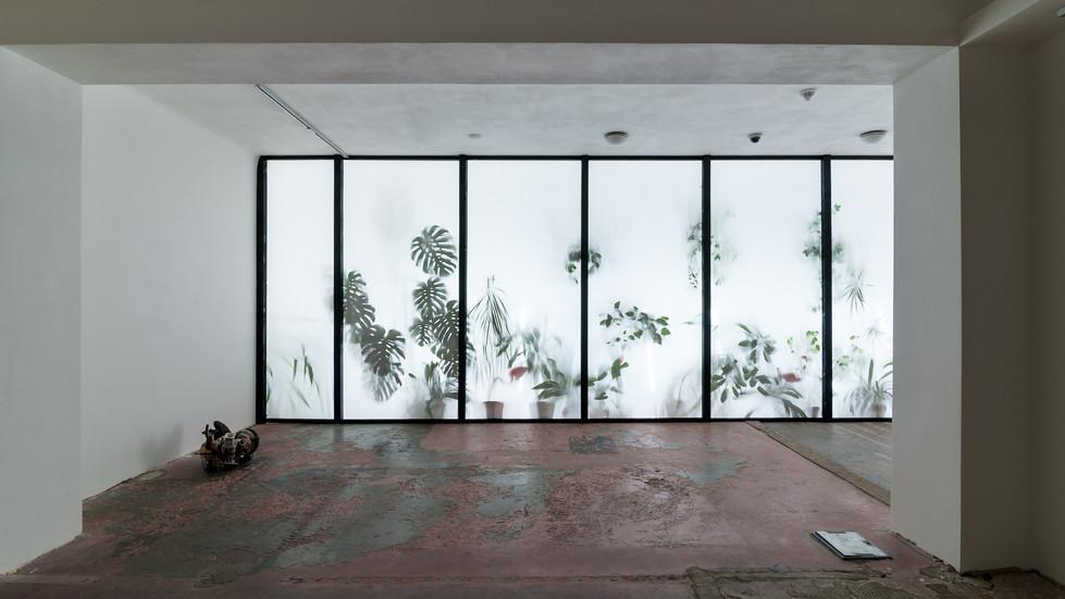 Pavilion of Empty Illusion