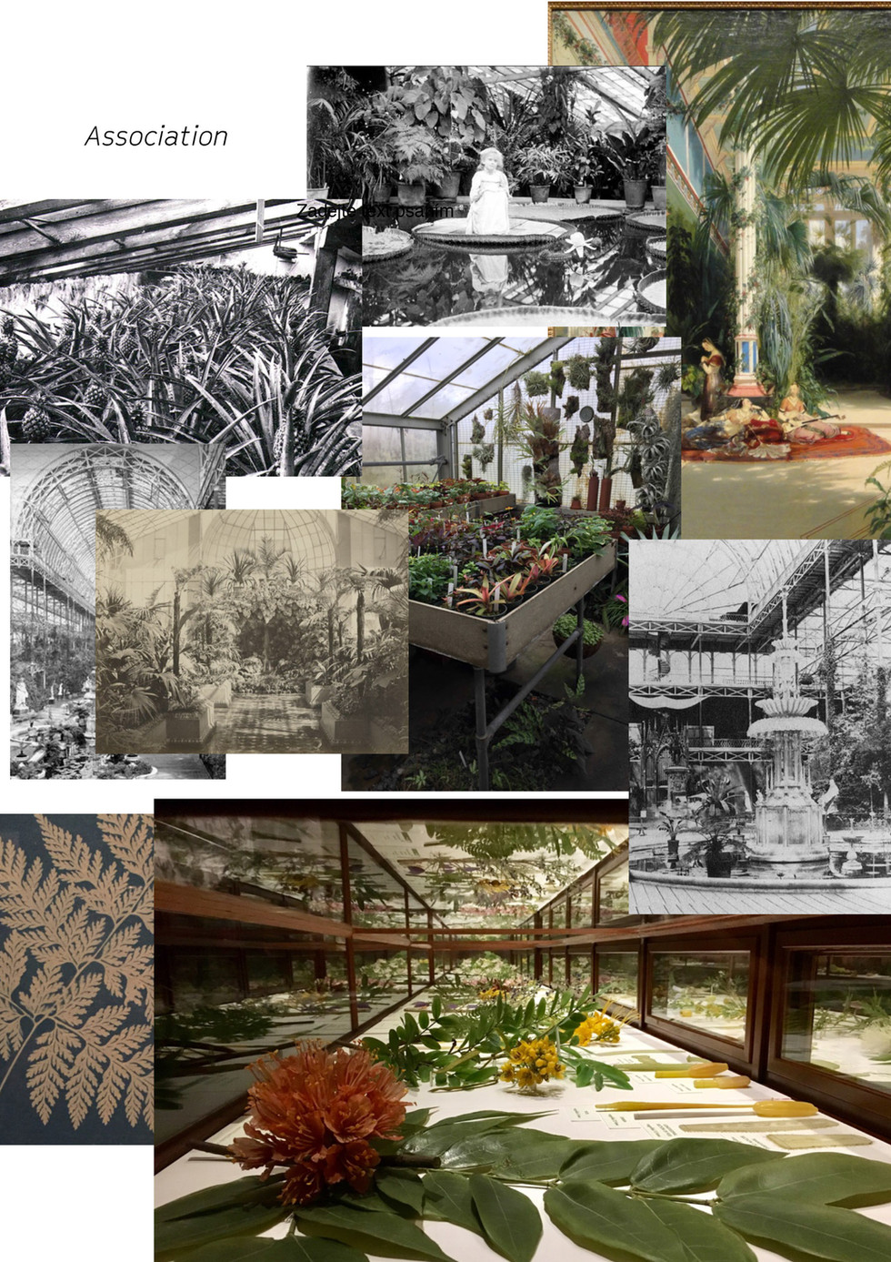 The Fourth Greenhouse