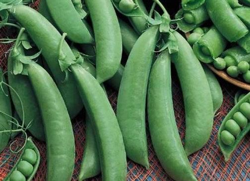 Garden Peas (300g)