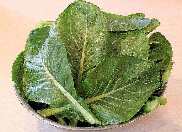 Komatsuna - Mustard Spinach (150g)
