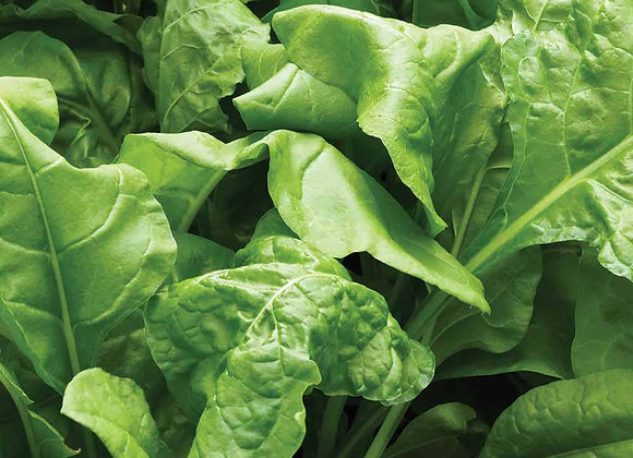 Spinach - perpetual (200g)