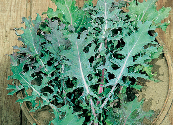 Baby Russian Kale (200g)