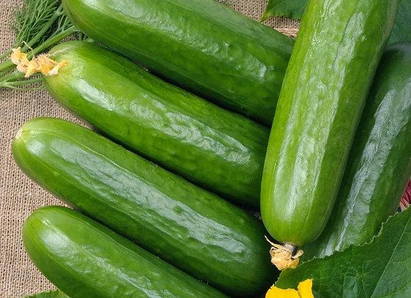 Cucumber (small)