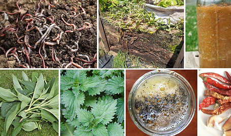 How to make your own compost, fertilisers & biostimulants