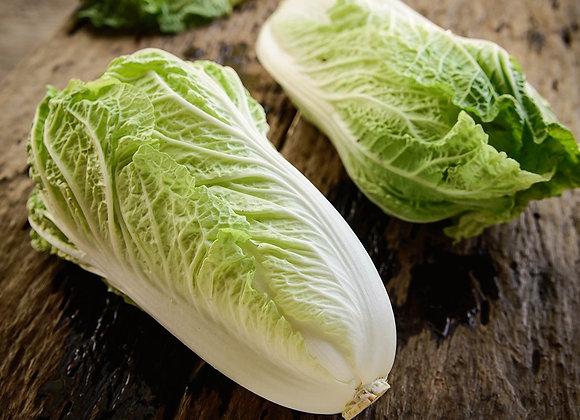 Chinese (Napa) Cabbage