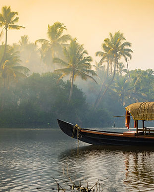 kerala-india-a-airbnb-20-for-2020.jpg