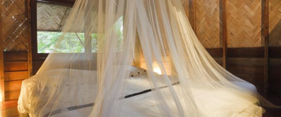mosquito-net.jpg
