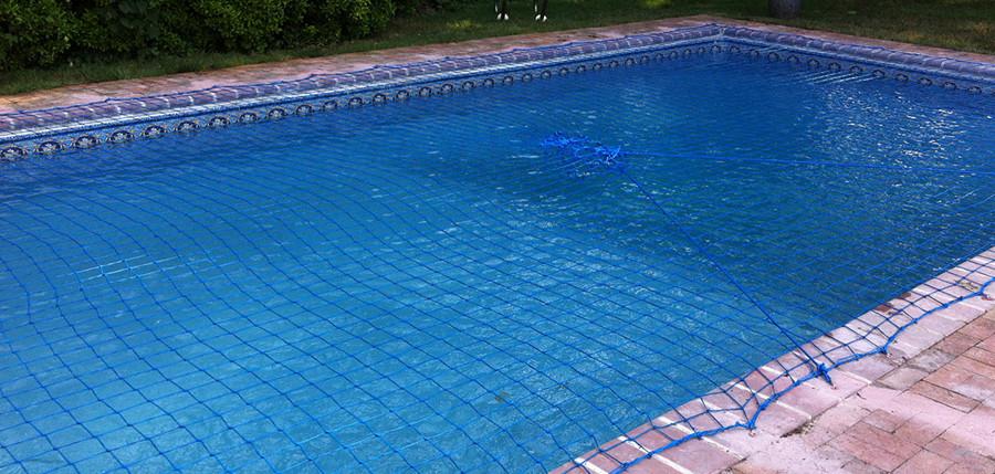 swim_bnr3.jpg