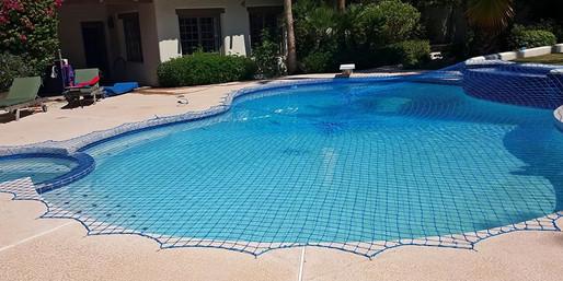 swim_bnr1.jpg