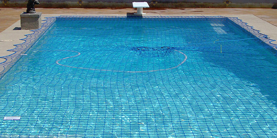swim_bnr2.jpg