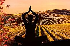 yoga in Tuscany.jpg