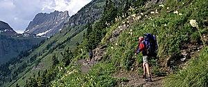 highline-trail-glacier-nati.jpg