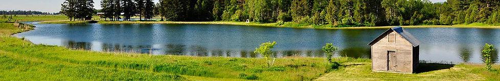 nature shot.jpg