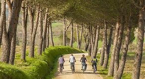 biking-tuscany.jpg
