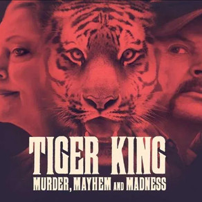 Tiger king - my thoughts