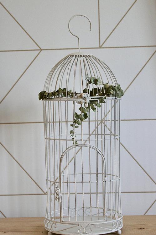 Cage à oiseaux avec détails