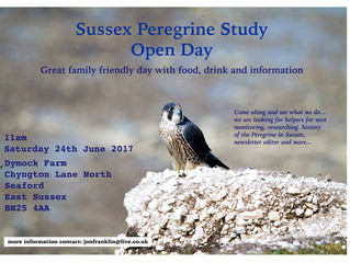 Sussex Peregrine Study Open Day