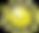 sun_edited.png