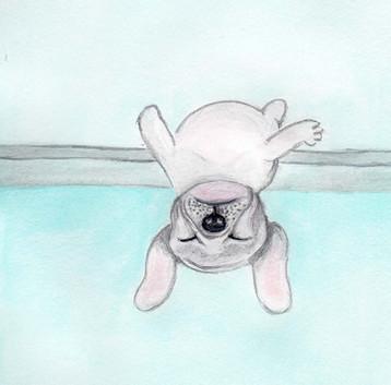 doggy-illustrations.jpg