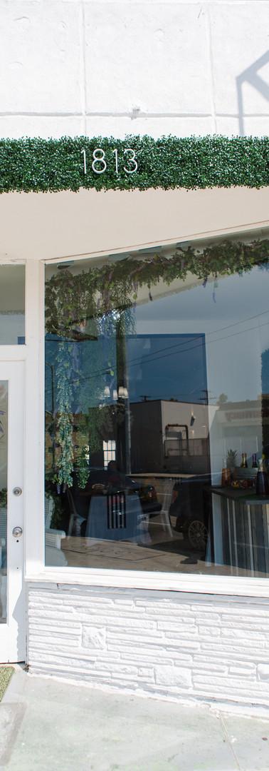 Violet Cactus Petite Venue