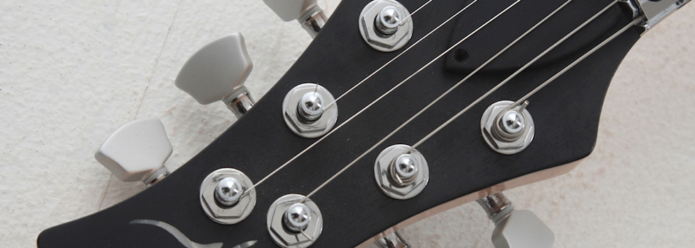 3x3 standard headstock for straight string pull