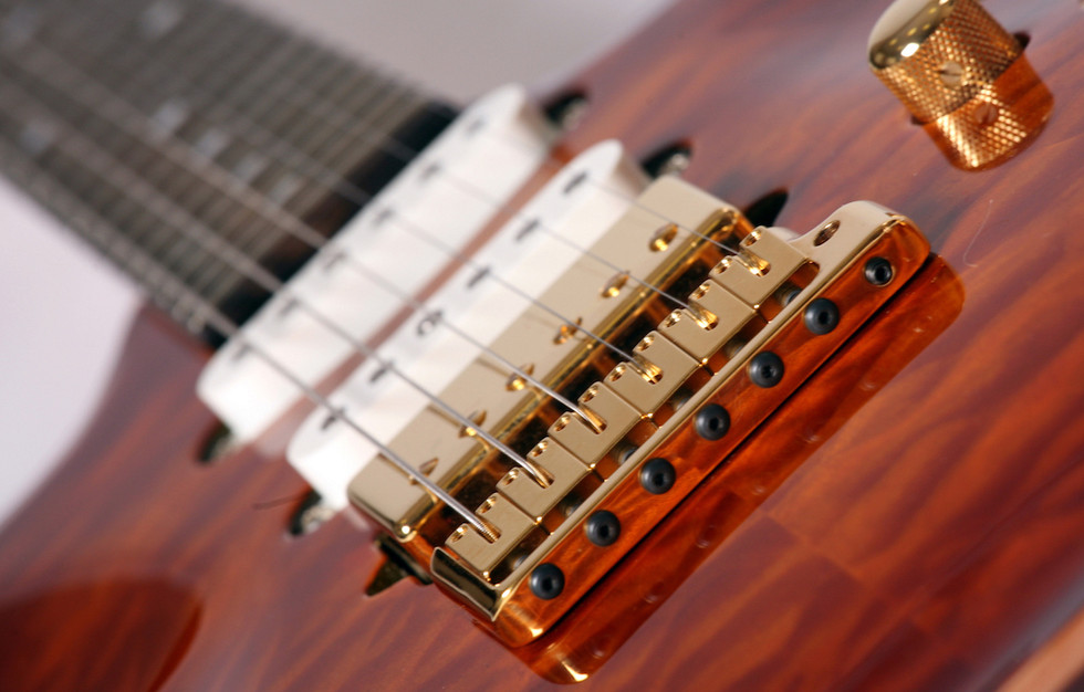 S style carved top custom guitar