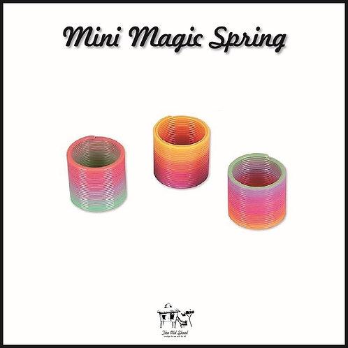 Mini Magic Spring   Toys   The Old Skool SG