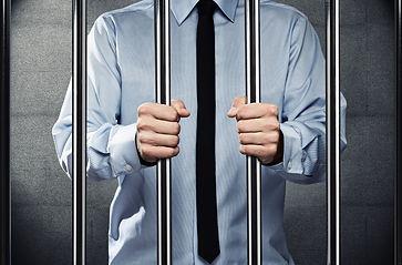 Pressebild 2013 hinter Gitter.jpg