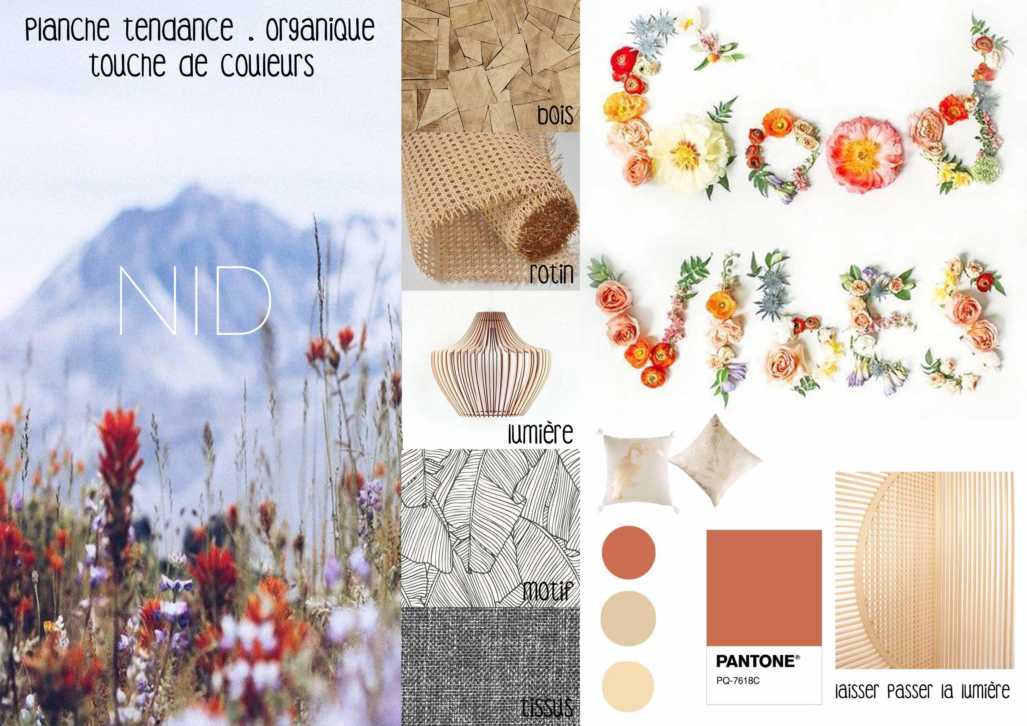 Planche tendance nature & motif