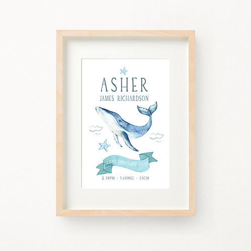 Whale Birth Print | Asher