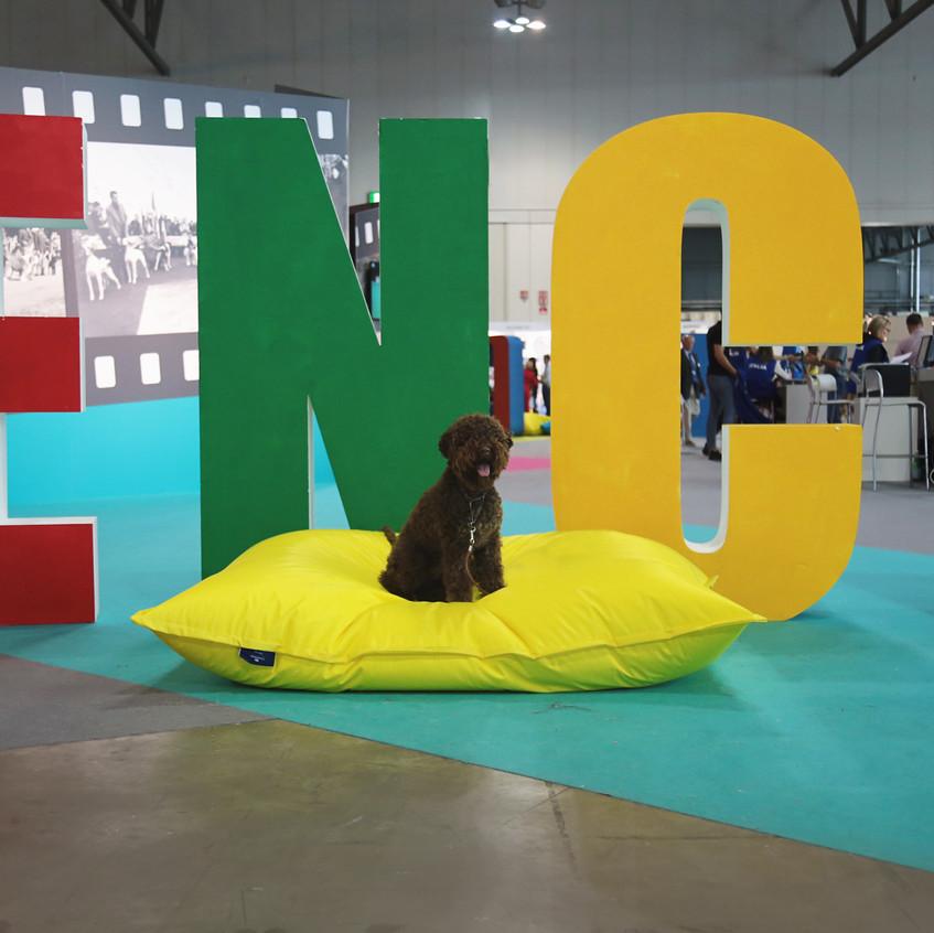 Enci show, BEST PUPPY