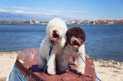 Milli és Leo
