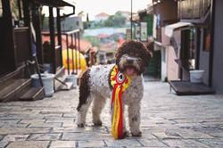 Montenegro Junior Champion