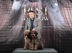 Winter dogshow 2019