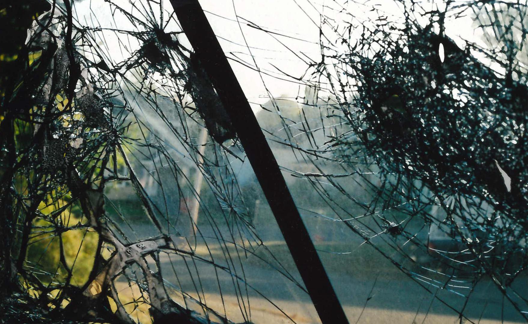 Spider-glass