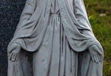 Mary 6