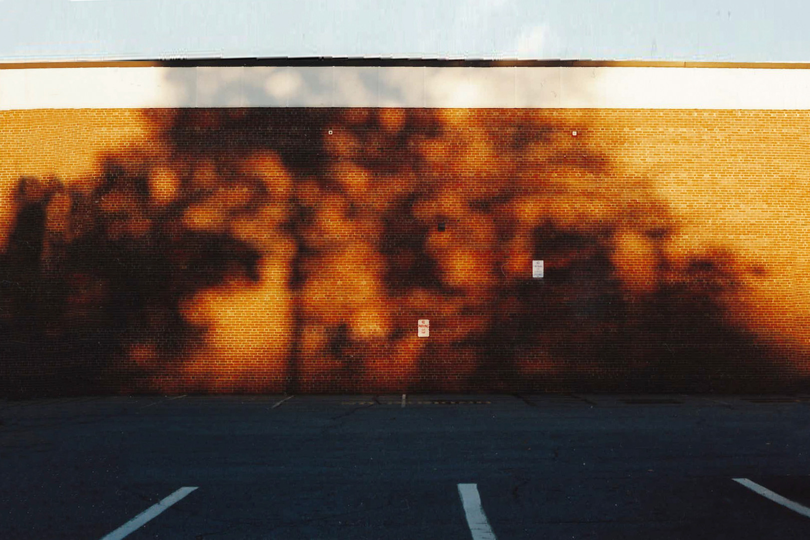 Latent Mural, October