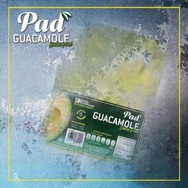 guacamole pad congelado.jpg