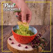 Guacamole PAD michoacano.jpg