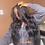 Thumbnail: Jassie's Look 13x6 HD Frontal Wig Sale+ Free Bundle